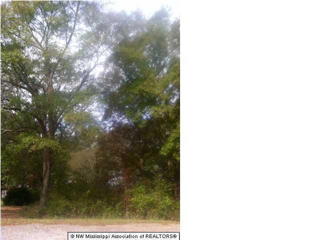 0 Oakley Road, Senatobia, MS 38668 (MLS #300446) :: Gowen Property Group | Keller Williams Realty