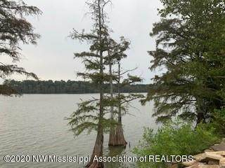 0 Moon Lake Rd, Dundee, MS 38626 (MLS #331573) :: The Live Love Desoto Group
