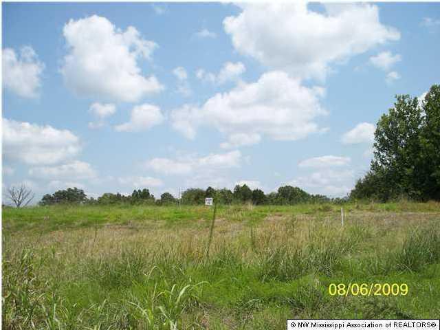 107 Myers Plantation Road, Byhalia, MS 38611 (MLS #260538) :: Signature Realty