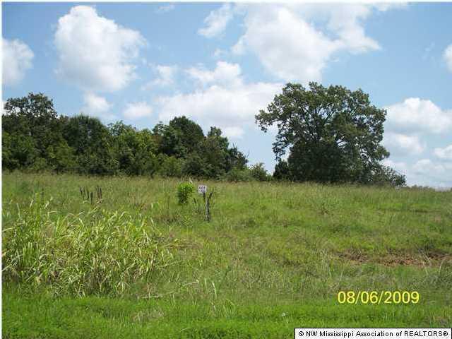 111 Myers Plantation Road, Byhalia, MS 38611 (MLS #260542) :: Signature Realty