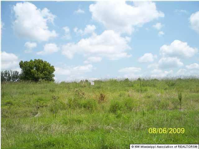 124 E Byhalia Creek Farms Road, Byhalia, MS 38611 (MLS #260555) :: Signature Realty