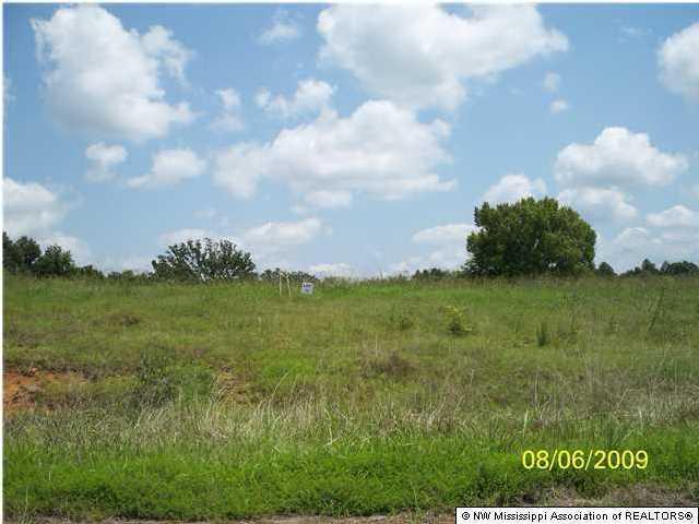 125 E Byhalia Creek Farms Road, Byhalia, MS 38611 (MLS #260556) :: Signature Realty