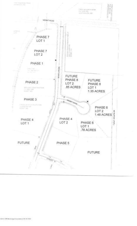 1 Nesbit Drive, Nesbit, MS 38651 (MLS #279421) :: The Home Gurus, PLLC of Keller Williams Realty