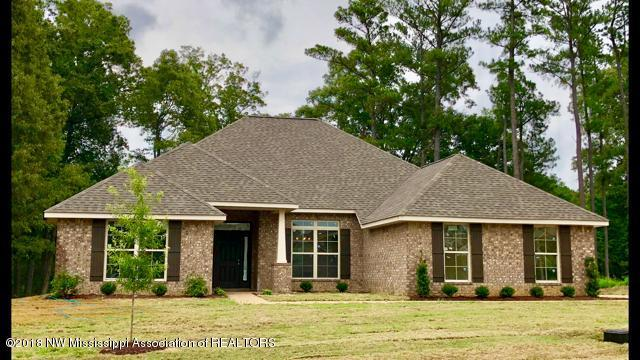 9610 Nielsen Drive, Olive Branch, MS 38654 (MLS #314073) :: Signature Realty