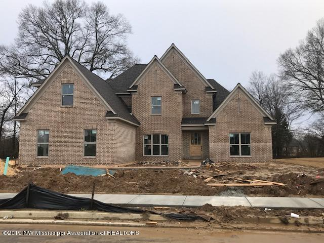 6918 Hawks View, Olive Branch, MS 38654 (MLS #320204) :: Signature Realty