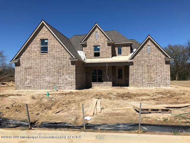 6846 Hawks View, Olive Branch, MS 38654 (MLS #321006) :: Signature Realty
