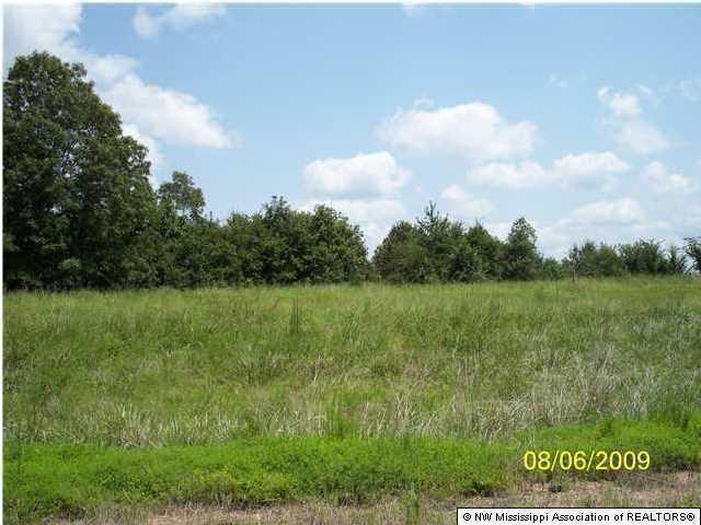 118 Myers Plantation Road, Byhalia, MS 38611 (MLS #260549) :: Signature Realty
