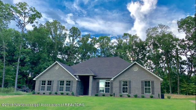 9562 Nielsen Drive, Olive Branch, MS 38654 (MLS #308146) :: Signature Realty