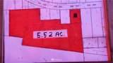 26241 Military Road - Photo 5