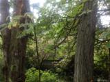 303 Woodland - Photo 3