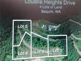 0 Louella Heights - Photo 12