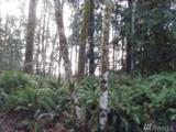 0 Toutle River Rd - Photo 1
