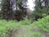 0-TBD Cougar Creek Rd - Photo 9