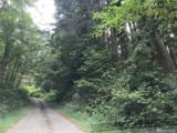 0 Forgotten Lane - Photo 1