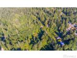 10287 Old Mt. Baker Highway - Photo 4