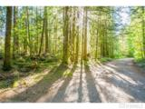 10287 Old Mt. Baker Highway - Photo 14