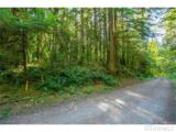 10287 Old Mt. Baker Highway - Photo 16