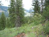 34 Lone Ranch Creek Rd - Photo 18