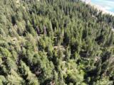 0 Morgan Creek 12 Acres - Photo 4