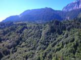 49 Xxx  Mt. Index River Road - Photo 5