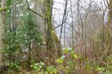 330 Panorama Dr - Photo 5