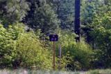 80 Rinky Dink Lane - Photo 1