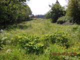 0 Elderberry Lane - Photo 1