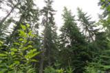 1 Lodge Creek Land - Photo 8