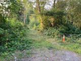 2243 Baby Doll Rd - Photo 3