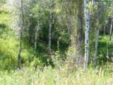 1111 Tbd Ellemeham Mountain Rd - Photo 4