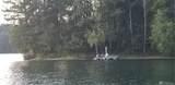 304 Winston Creek - Photo 3