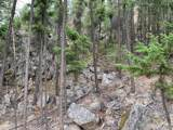 0-TBD Gold Rush Ridge Road - Photo 8