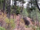 0-TBD Gold Rush Ridge Road - Photo 9