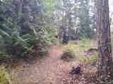 9999 Blue Grouse Run - Photo 2
