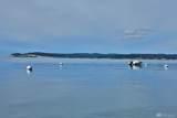 6404 Ebb Tide Lane - Photo 2