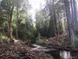 0 Spruce Rd - Photo 7
