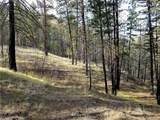 2 Hunter Mountain (Old Squaw Cr) Road - Photo 18