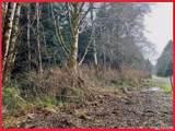 2 Coral Lane - Photo 6