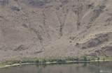 0-Lot 4 Columbia River - Photo 4