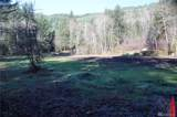 11105 Lewis River Rd - Photo 16