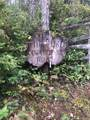1180 Dewatto Hills Rd - Photo 1