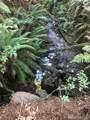 0 Lakeness Rd - Photo 5