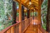 72 Fern Gully - Photo 38