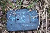 3870 Holtzheimer Trail - Photo 5