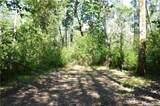 3870 Holtzheimer Trail - Photo 23