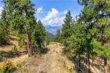 260 Bear Ridge Lane - Photo 9