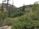 0 Tyee View Entiat River Rd - Photo 2