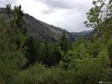 0 Tyee View Entiat River Rd - Photo 5