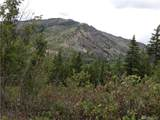 0 Tyee View Entiat River Rd - Photo 7