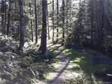 10500 Mt Baker Highway - Photo 26